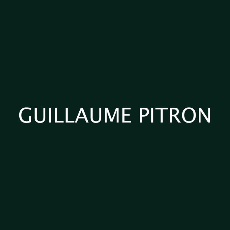 Guillaume Pitron